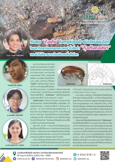 """ค้นพบ """"กุ้งเต้น""""(amphipod) ชนิดใหม่ของโลก ในมหาวิทยาลัยเกษตรศาสตร์ ตั้งชื่อว่า """"กุ้งเต้นคงเสมา"""""""