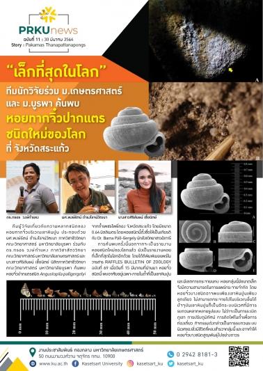 ทีมนักวิจัยร่วม ม.เกษตร และ ม.บูรพา ค้นพบหอยทากจิ๋วปากแตรชนิดใหม่ของโลก